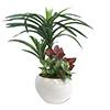 人工観葉植物 ユッカ寄植え Sサイズ