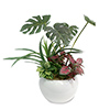 人工観葉植物 モンステラ寄植え Sサイズ